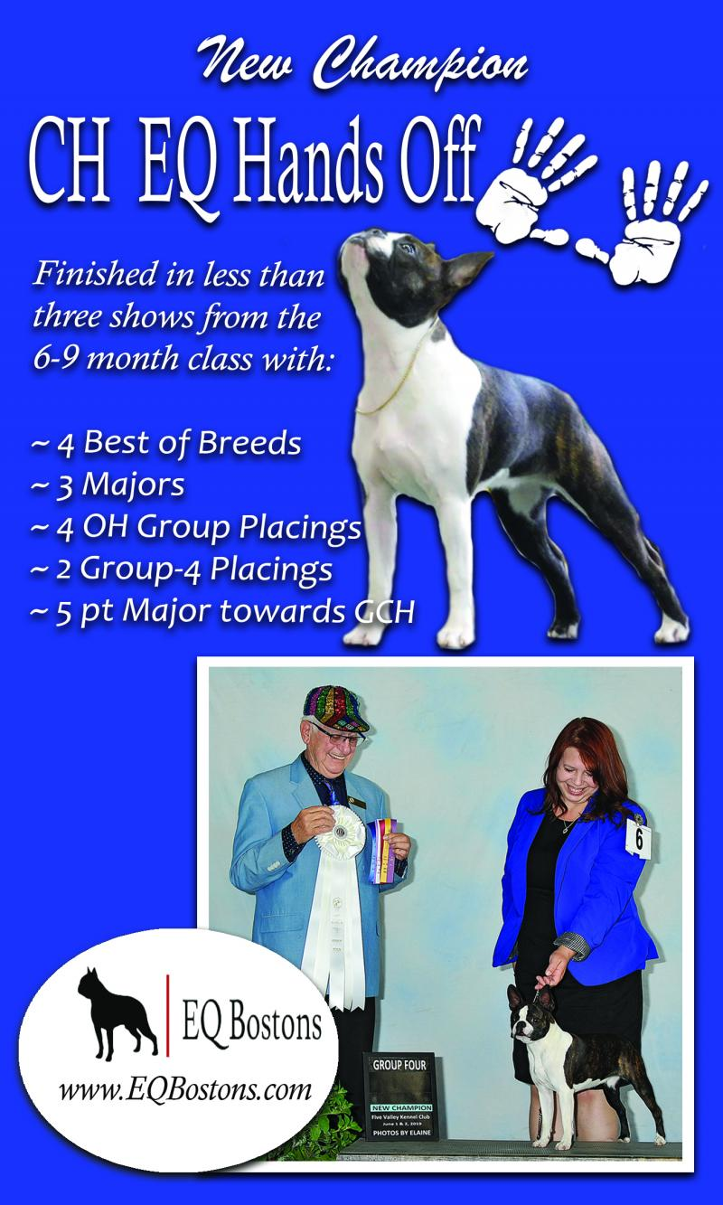 CH EQ Hands Off - new champion - BTCWW Specialty ad